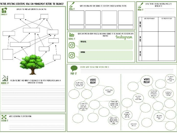 Factors that affect ecosystems lesson & worksheet AQA