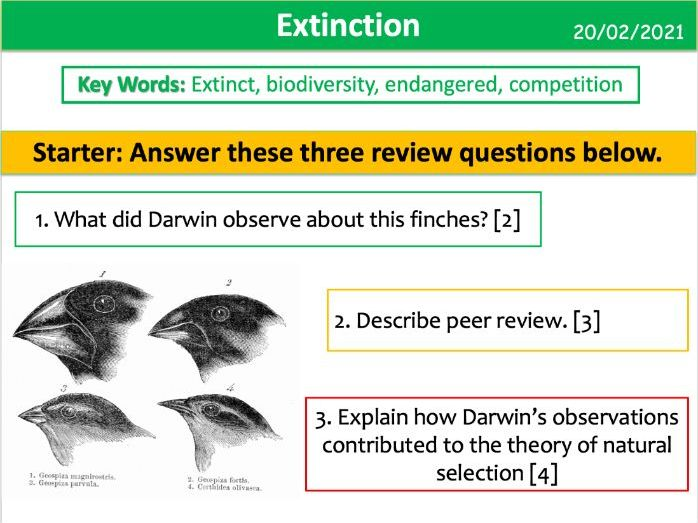 Extinction (AQA KS3)