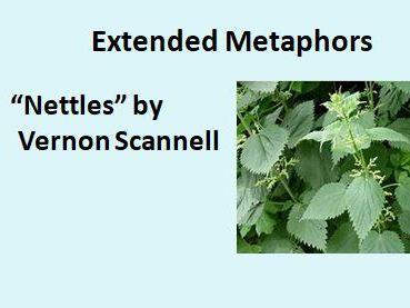 Nettles: Extended Metaphors