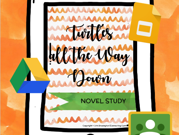 Turtles All The Way Down Novel Study
