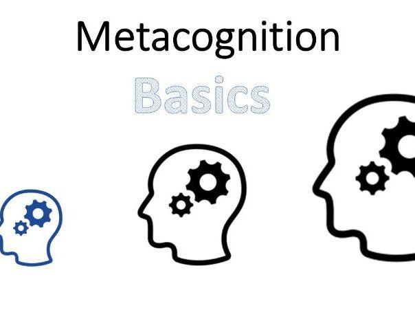 Metacognition Training - Basics
