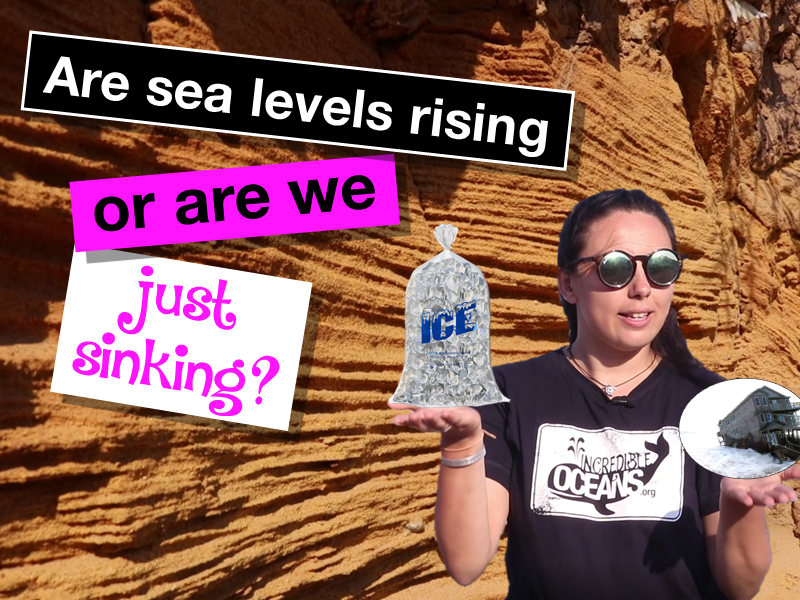 Isostatic and eustatic sea level change and Suffolk case study