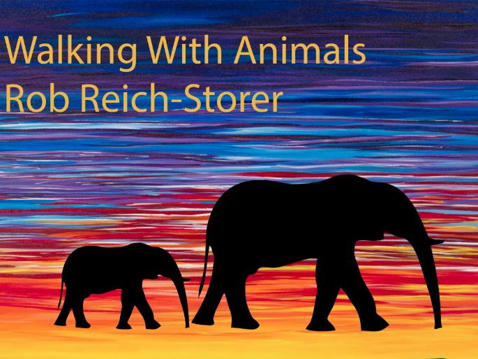 Early Years & KS1 - Tried and Tested Original Music. SONG 2 - Walking With Elephants
