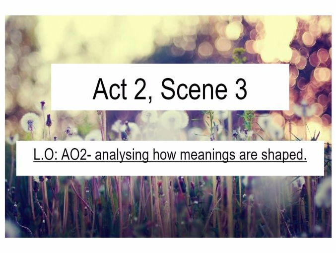 Othello Act 2 Scene 3 Iago Tragedy