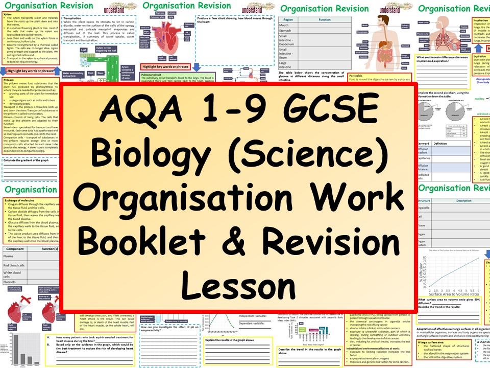 AQA 1-9 GCSE Biology (Science) Biological Organisation Work Booklet & Revision Lesson