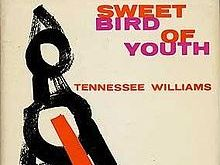 Tennessee Williams' 'Sweet Bird of Youth' lesson 6 - characterisation and an initial look at Act 2.1