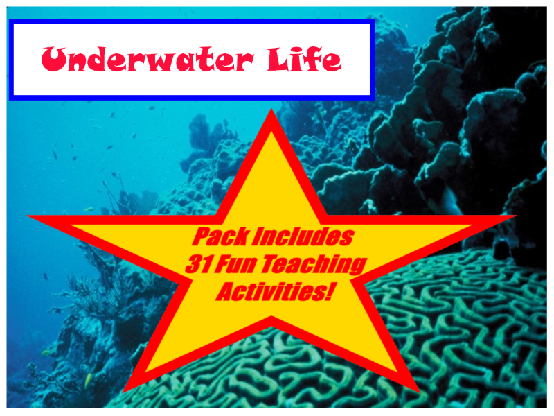 30 Photos Of Underwater Water Life + 31 Fun Teaching Activities To Try In Class