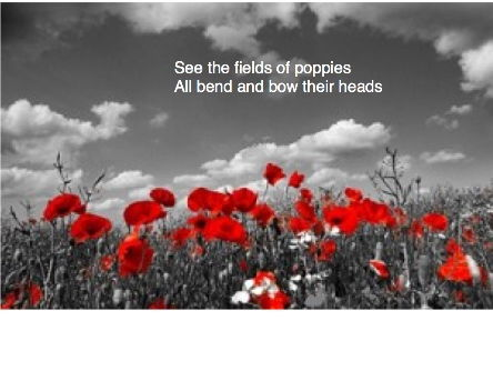'Poppies': an original song for Remembrance. Suitable for KS1-3