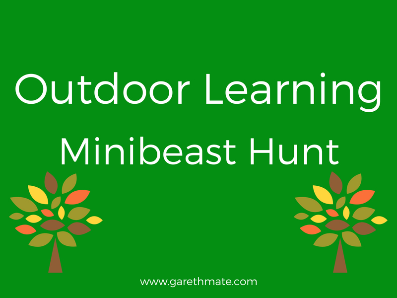 Outdoor Learning - Minibeast Hunt