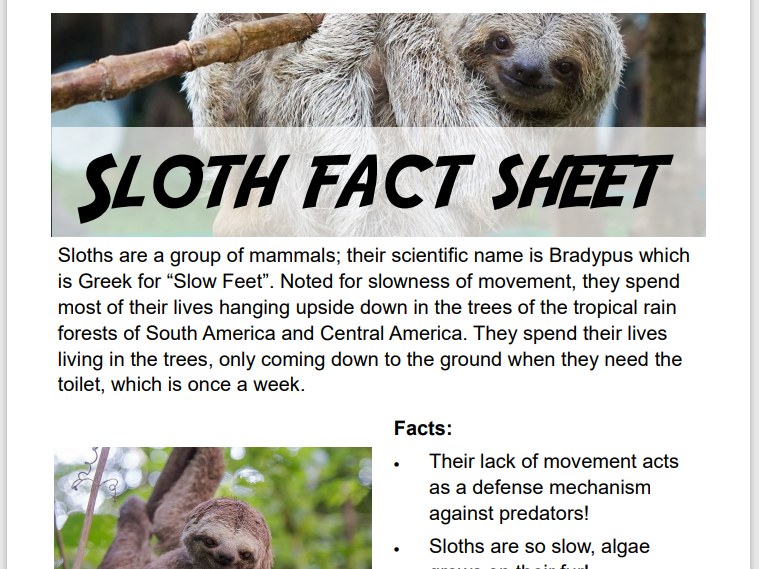 D&T KS2 Primary School Sloth Project - 4 Worksheets & Video (Perfect for home learning)