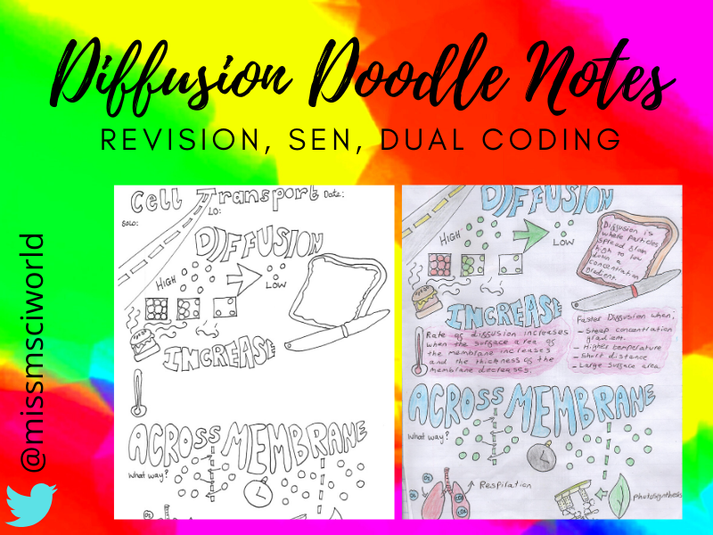 Diffusion Science Doodle Notes