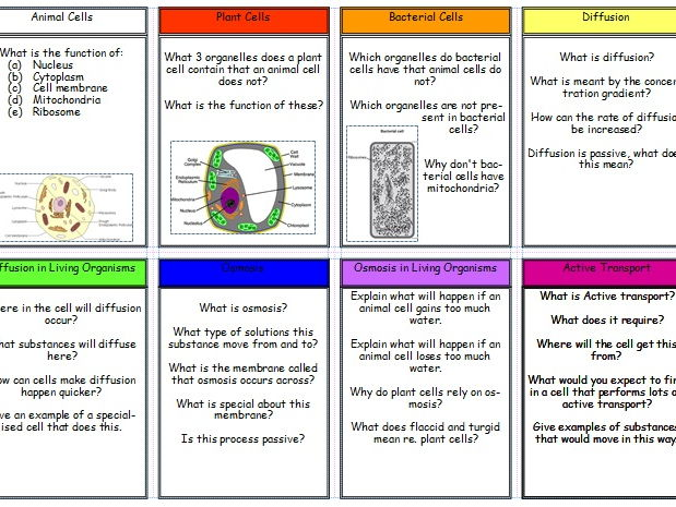 New (2016) AQA GCSE Biology Revision Cards: Cells Topic