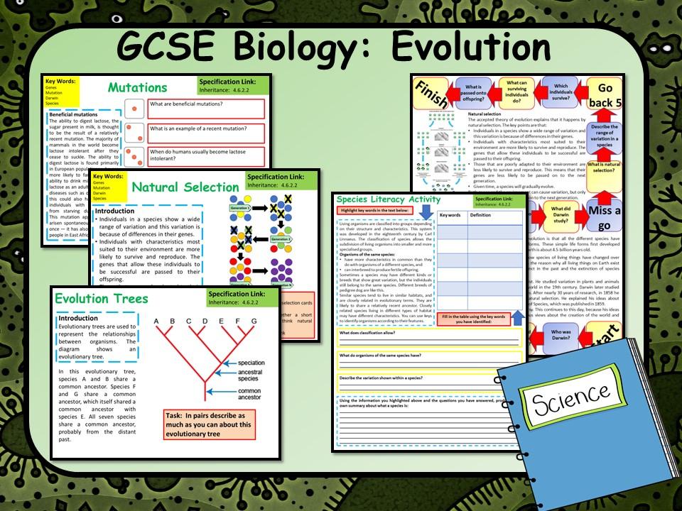 AQA GCSE Biology (Science) Evolution Lesson   Teaching Resources