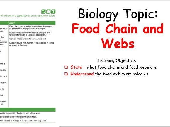 Food Chains and Webs - KS3