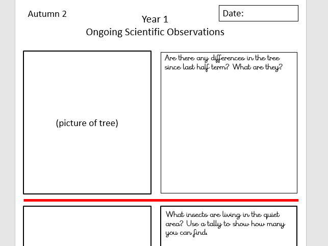 Long Term Observing over time templates - whole school