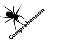 Comprehension - Spiders