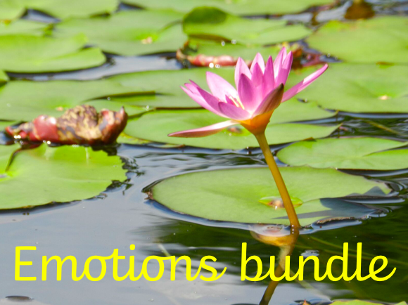 Emotions bundle: Primary Mindfulness and Wellbeing through real stories.
