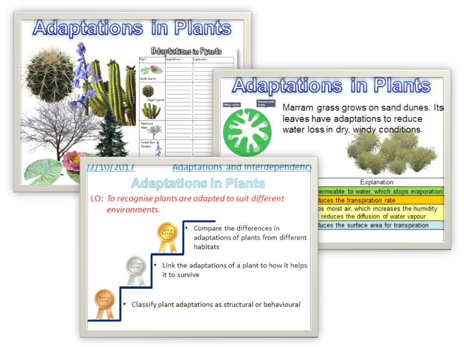 Adaptations in Plants AQA 2016
