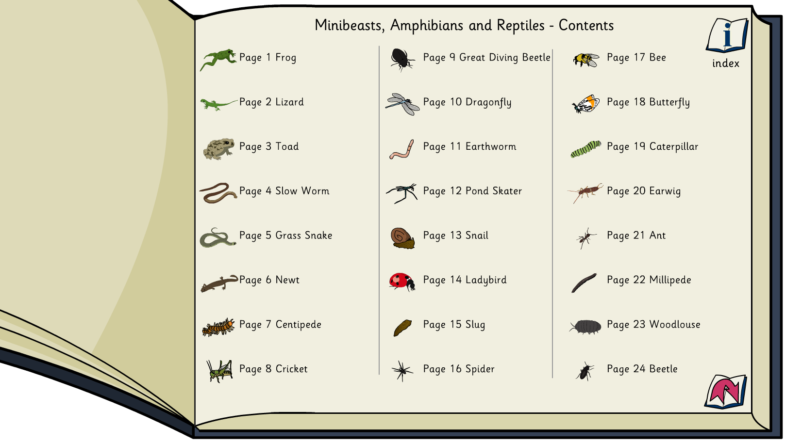 Minibeasts, Reptiles and Amphibians Interactive Information Book -  KS1/KS2 Literacy