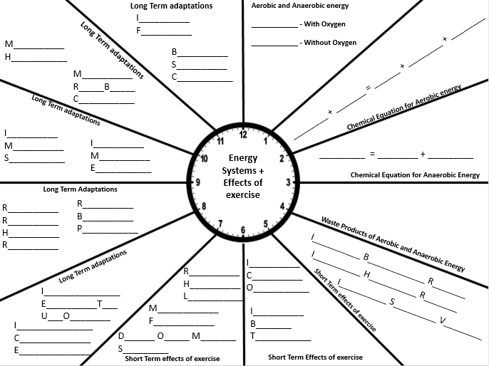 Revision Clock: Energy Systems and Effects of Exercise