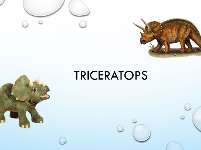 Triceratops info