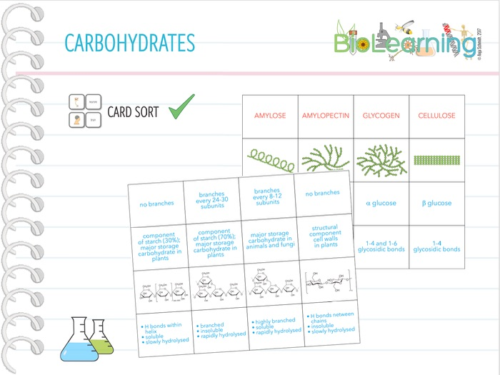 Carbohydrates (Polysaccharides) - Card Sort (KS5)