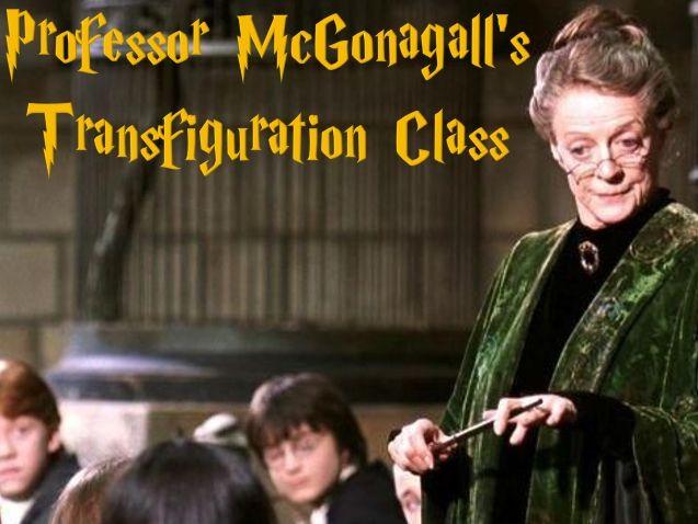 Harry Potter Transfiguration Class
