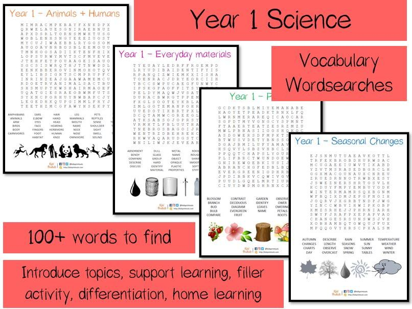 Year 1 Science vocabulary word searches x 4 - over 100 terms