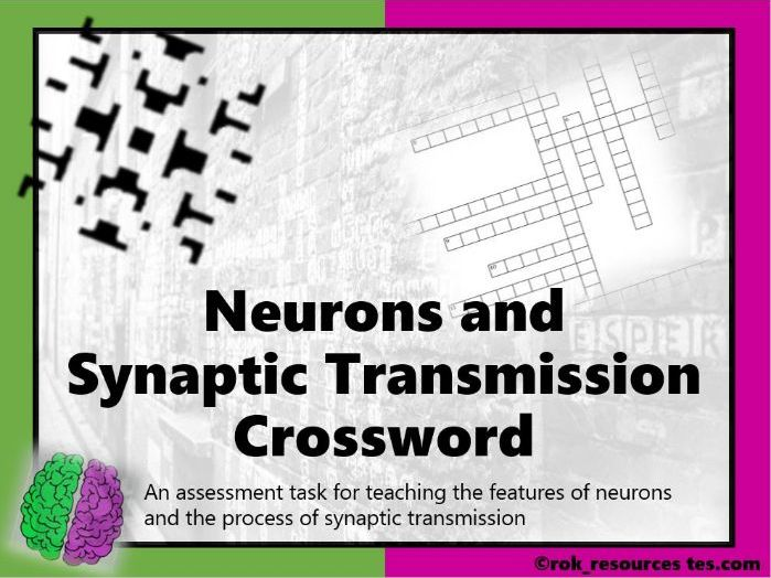 Biopsychology Crossword 2 - worksheet