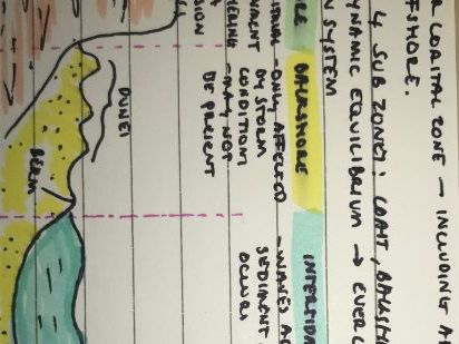 NEW Edexcel Geography A Level - Revision Flashcards