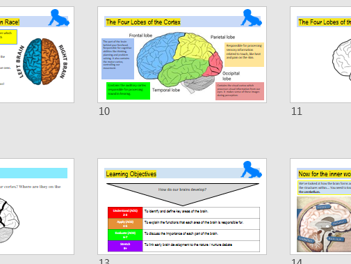 AQA  GCSE Psychology (9-1) DEVELOPMENT - Whole topic ppts and resources