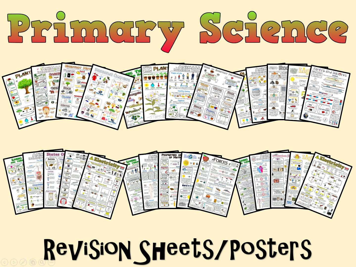 Primary Science Posters/Revision Sheets