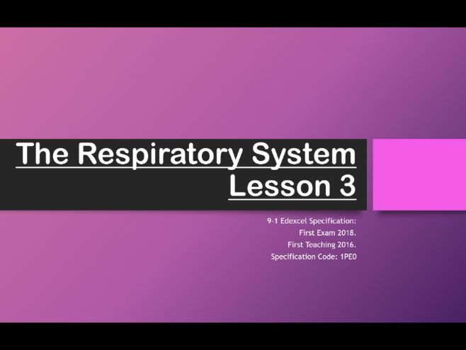 Edexcel 9-1 GCSE PE - The Respiratory System Full Topic Powerpoints