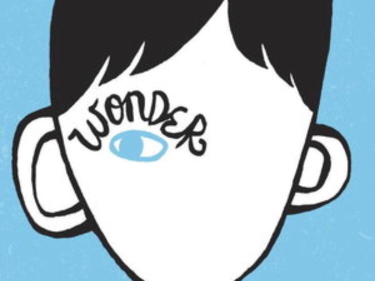 Comprehensive PowerPoint of lessons and resources for  'Wonder' by R.J.Palacio