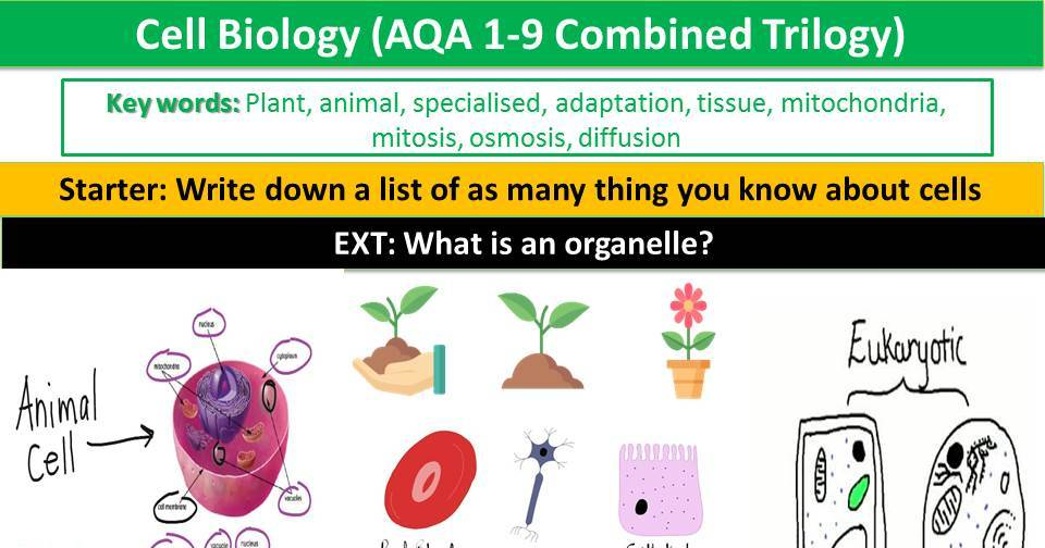Cell Biology (AQA 1-9 Combined Trilogy)