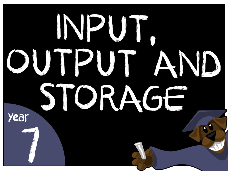 Input, Output and Storage