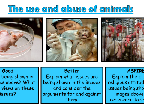 AQA A GCSE Theme B Religion and Life: Lesson 5 The use and abuse of animals