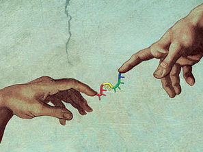 Playing God?  Genetic Engineering Debate