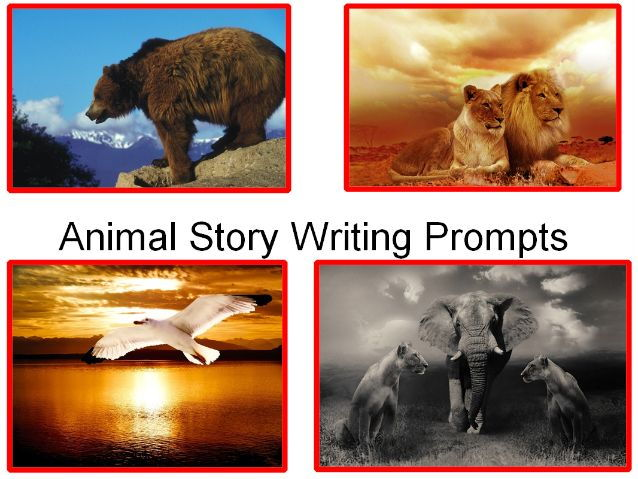 Animal Story Writing Prompts + 71 Photos of animals + Minibeast photos + 31 Teaching Activity Pack