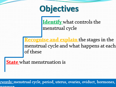 Menstrual cycle lesson