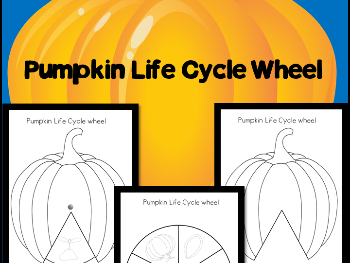 Pumpkin Life Cycle Wheel