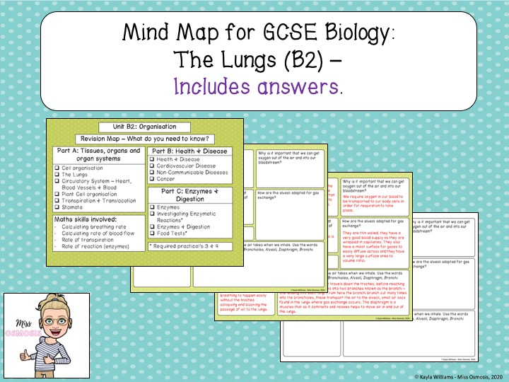 GCSE Biology Revision: The Lungs