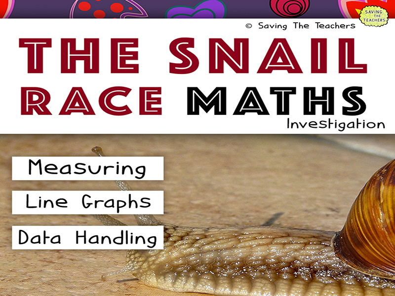 The Snail Race Maths Investigation