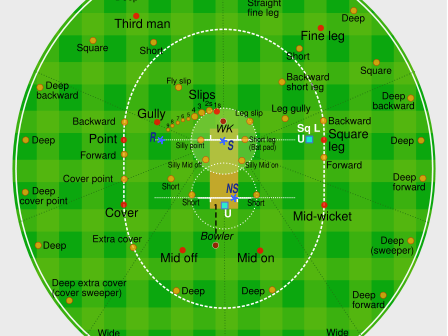 PE Dept - Cricket Fielding Positions Cards / Posters