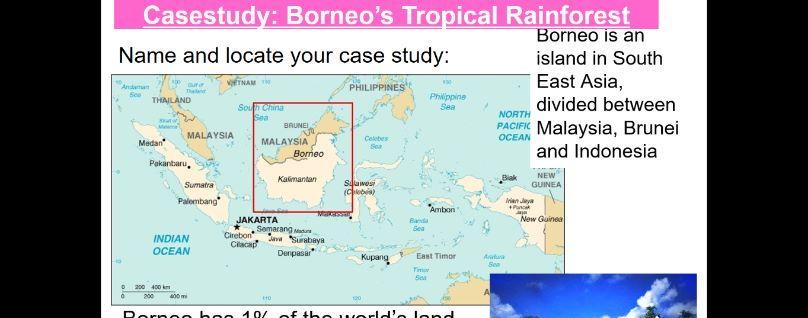 GCSE Geography - Environmental Challenges - Destruction of biodiversity - palm oil production