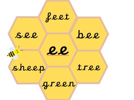 Phonics Honeycomb Display - Phases 3-5