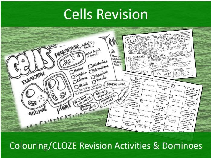 Cells Revision activities- NEW AQA GCSE Trilogy Biology - Colouring/Activity Sheet & Dominoes