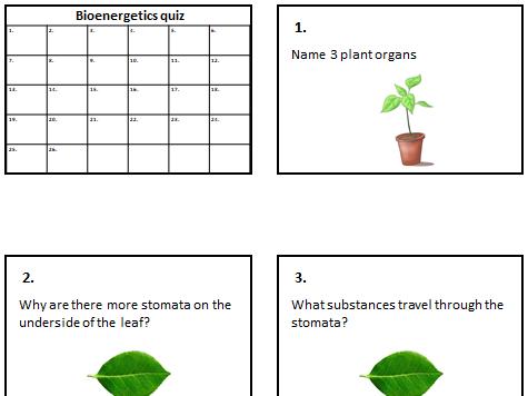 New GCSE AQA 2016 Spec Trilogy Biology Bioenergetics revision picture quiz