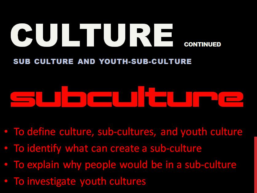 Subculture Lesson