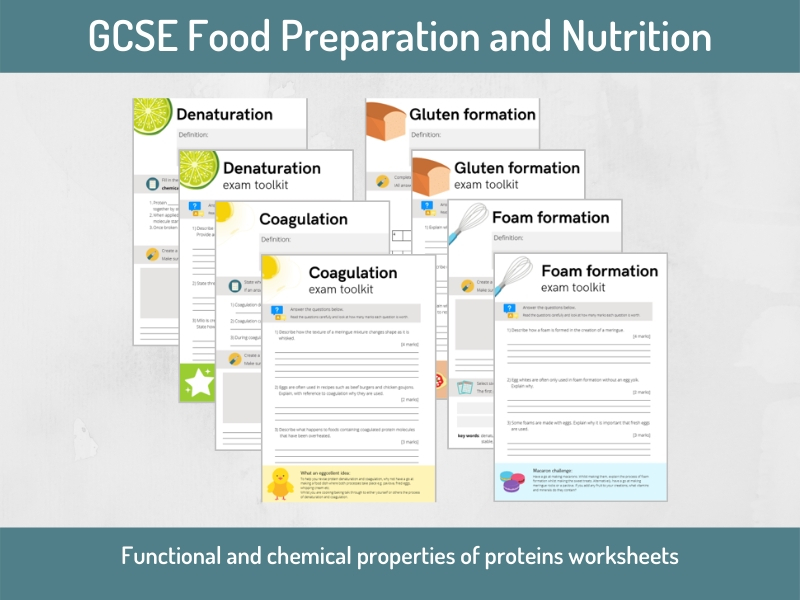 Food science: Protein worksheets and exam questions (GCSE Food Preparation and Nutrition)